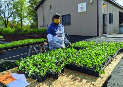 Edible Flint & LatinX Center Share Plants & Seeds With Flint Community Families